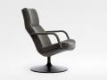 Fauteuil Artifort F154-F156 armchair