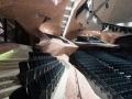 theaterstoel-polyphony-klapstoel-zwart